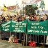 Тысячный митинг собрался возле Верховной Рады