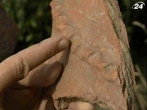 Археологическая находка в Сочи