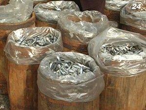 Украина продолжит поставки рыбы в Таможенный союз