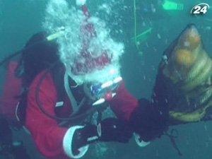 Дайверы встречают Новый год под водой