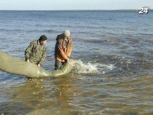 Киевское море зарибнилы
