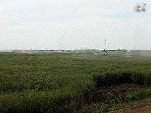 Земля для выращивания зерновых