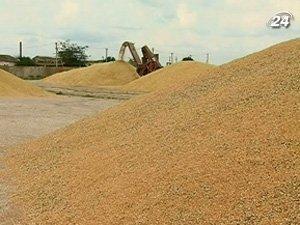 Квоты на экспорт зерна действуют до июля 2011
