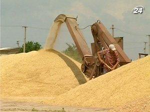 Власти контролировать экспортный поток зерна