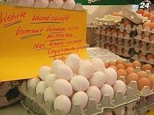 Набирает обороты скандал вокруг диоксиновых яиц