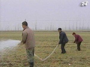 Китаю грозит продовольственный кризис