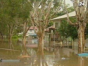 В Австралии от наводнения страдают не только люди, но и животные