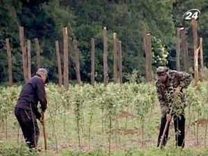 Аграрии считают, что условия свободной торговли с ЕС поставят их на колени