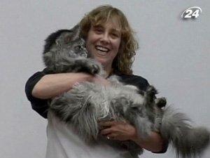 Самый длинный в мире кот