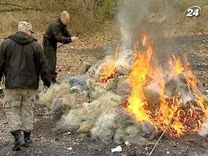 На Киевщине сожгли изъятые орудия рыбаков-браконьеров