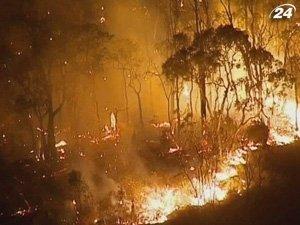 Запад Австралии страдает от лесных пожаров