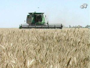 Привлекательность украинского зерна снизилась за рисков ограничения экспорта