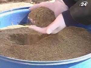Почти две тонны марихуаны изъяли правоохранители на Прикарпатье