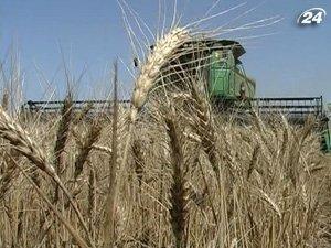 Ввели квоты а экспорт зерна из Украины