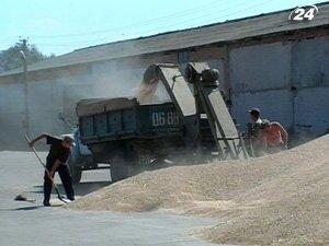 Моратория на экспорт зерна не будет