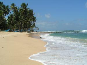 Песчаный пляж в Шри-Ланке