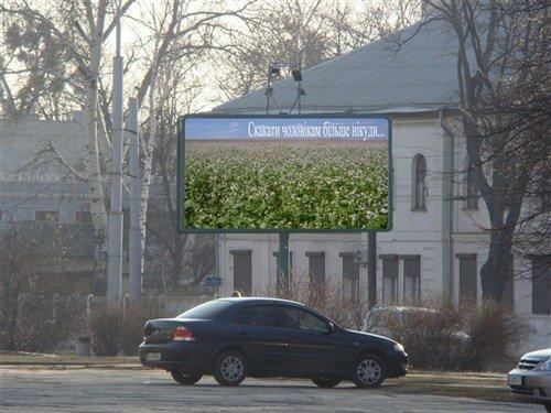 поле гречихи билборд