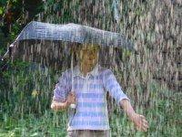 В дождь под зонтиком