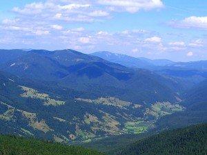 Долина в Карпатах (Львовская область)