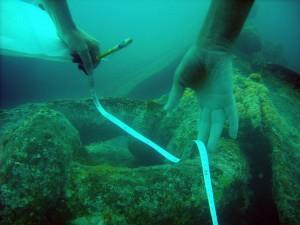 Подводная археология