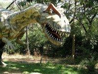 Динозавр. Фото Fab Subeject
