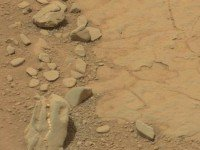 «Череп» динозавра на Марсе. Фото NASA