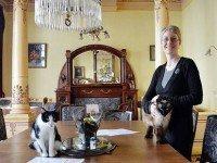Кошачий бар. Фото lalibre.be