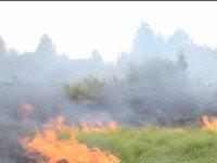 В районе Чернобыля горит трава. Фото 5.ua